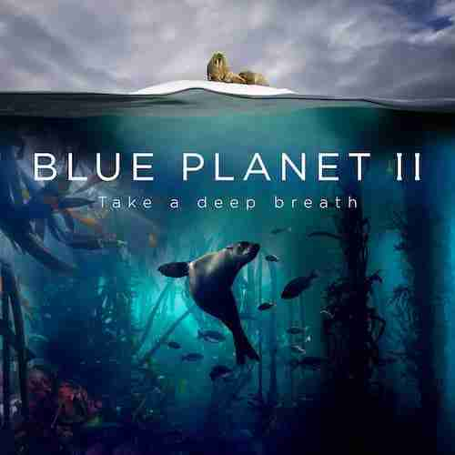 Radiohead & Hans Zimmer - (ocean) bloom [ Blue Planet II ]