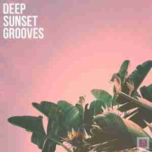 Deep House & Lo-Fi House Spotify Playlist: Deep Sunset Grooves