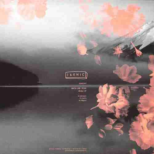 Novio Dub Tribe - Kakiuchi Dub [Akiba EP]