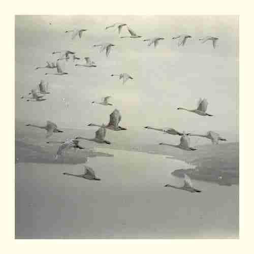 Snow-Ghosts-Calibre-Remix
