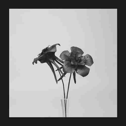 [Footwork & Jungle] Jlin – Nyakinyua Rise & Mic Mills – Pig Of A Man