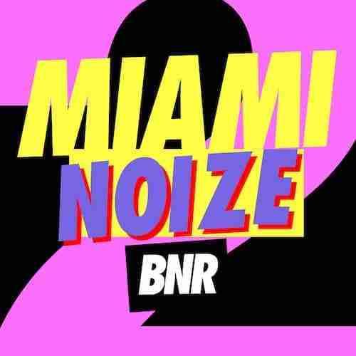 Miami Noize Sampler (Boys Noize Records)